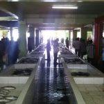 【モルディブ】マーレ島の台所!魚市場と野菜市場に行ってみた
