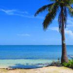 【ケイマン諸島】カリブ海の島・ケイマン諸島のウミガメとビーチに大興奮!レンタカーで巡った珍道中!