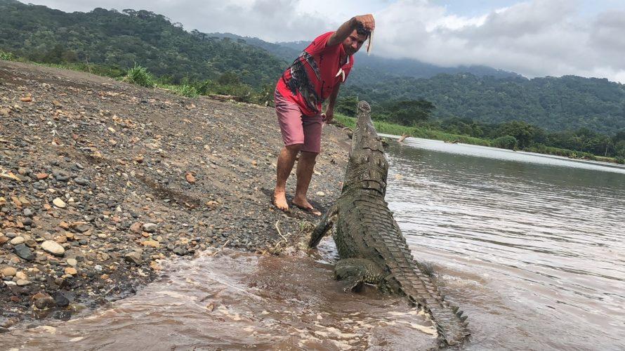 【コスタリカ】軍隊の無い平和な国!?中米・コスタリカは熱帯雨林と野生動物の宝庫だった!