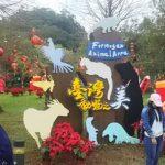 【台湾】台北市内でパンダやコアラが見れるおすすめ動物園